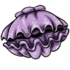 Thumbnail popup giant clam