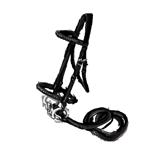harness-black.png.218d4d8c000de9546845c998e48c4ac6.png